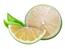 糖果,在白色背景隔绝的绿色葡萄柚 免版税库存图片