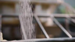 糖特写镜头涌入揉面机 E 当烹调时,糖涌入混合的搅拌器与面团 股票视频