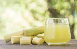糖蔗汁 免版税库存照片