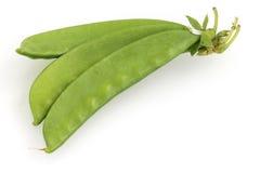 糖豌豆荚 库存图片