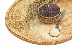 糙米和水稻在竹子 免版税库存图片