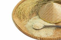 糙米和水稻在竹子 图库摄影