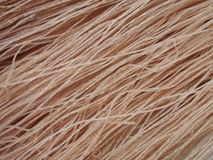 糙米干面条 库存图片