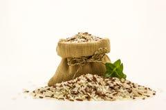 糙米混杂的白色(茉莉花)米 库存图片