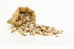 糙米混杂的白色(茉莉花)米 免版税库存照片