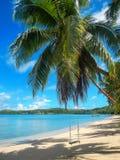 系住摇摆在Nananu我镭海岛,斐济上的海滩 库存照片