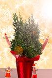 系列圣诞节场面 免版税图库摄影