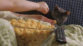 系列愉快爱 母亲和她的女儿儿童女孩在屋子里吃在床上的玉米花 电视的前面 影视素材