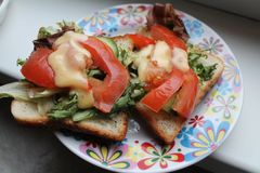 素食三明治用蕃茄 库存图片