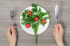 素食主义的概念 Tio wonam ` s手和p视图照片  免版税库存图片