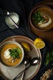 素食主义者在单色画的扁豆汤 免版税图库摄影