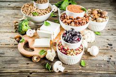 素食主义者植物蛋白来源 免版税库存图片