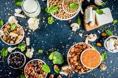 素食主义者植物蛋白来源 免版税库存照片