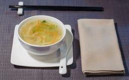 素食主义者汤用韭葱、红萝卜和daikons 免版税库存图片