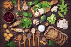 素食主义者蛋白质来源 库存图片
