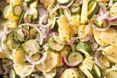 素食主义者食物:平底锅特写镜头未加工的蔬菜被切象ratatouille用绿皮胡瓜,土豆,葱和晒干与 免版税库存照片