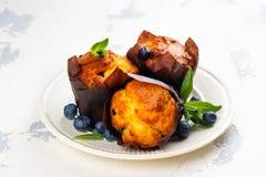 素食主义者香蕉燕麦粥松饼用蓝莓 库存照片