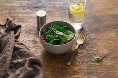 素食生物动态的食物 碗沙拉菠菜,甜菜离开, wat 库存照片