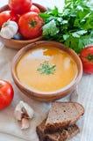 素食蔬菜汤 库存图片