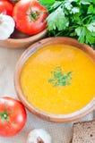 素食蔬菜汤 库存照片