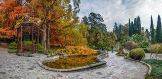 索契,俄罗斯- 2017年11月12日:日本庭院在树木园 免版税库存照片