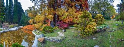 索契,俄罗斯- 2017年11月12日:树木园-日本庭院 库存图片