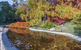 索契,俄罗斯- 2017年11月12日:树木园-池塘在日本庭院里 库存照片