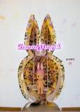 索尼天使商店内部射击,商店位于深圳湾Mixc 免版税库存图片