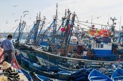 索维拉,摩洛哥- 2013年9月15日:在与海鸥和渔夫的历史的口岸停住的蓝色木渔船 库存照片