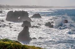 索诺马海岸海浪 库存图片