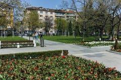 索非亚,保加利亚- 2018年4月14日:花在全国劳动人民文化宫前面的公园在索非亚 免版税库存照片