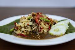 索马里兰胃泰国辣,泰国绿色番木瓜沙拉 免版税库存照片