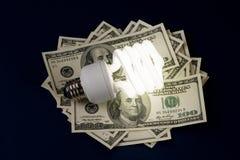 紧凑美元萤光电灯泡 免版税库存图片