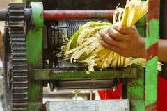 紧压汁液从甘蔗印度街道 库存图片