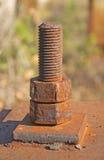 紧固的螺栓 免版税库存图片