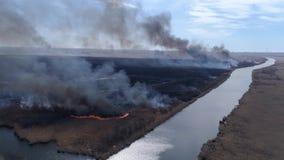 紧急灾害本质上,大野火快行由与上升至天空的烟的干燥领域在河,鸟眼睛附近 股票视频