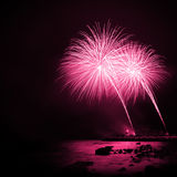 紫红色的烟花 免版税库存图片