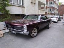 紫罗兰上色了1965年比德GTO 库存图片
