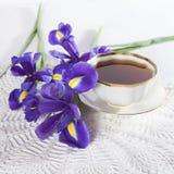 紫罗兰使xiphium球茎虹膜,与茶的sibirica现虹彩在白色背景的与文本的空间 顶视图,平 Holid 库存图片