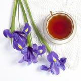 紫罗兰使xiphium球茎虹膜,与茶的sibirica现虹彩在白色背景的与文本的空间 顶视图,平 Holid 免版税库存图片