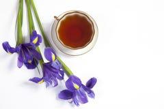紫罗兰使xiphium球茎虹膜,与茶的sibirica现虹彩在白色背景的与文本的空间 顶视图,平 Holid 库存照片