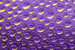 紫罗兰色抽象的背景 免版税库存照片