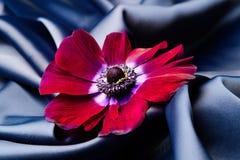 紫罗兰色花在一种蓝色发光的丝绸波浪织品说谎 免版税库存图片