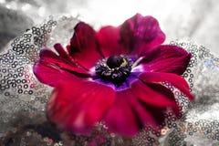 紫罗兰色花在一种蓝色发光的丝绸波浪织品说谎 库存图片