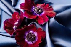 紫罗兰色花在一种蓝色发光的丝绸波浪织品说谎 库存照片