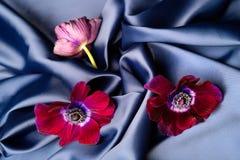 紫罗兰色花在一种蓝色发光的丝绸波浪织品说谎 免版税库存照片