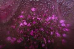紫罗兰色花花束  库存图片