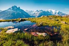 紫胶Blanc湖的五颜六色的夏天视图有勃朗峰的Mont 免版税图库摄影
