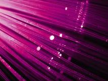 紫色光芒变薄 图库摄影