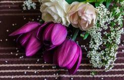 紫色和淡粉红的郁金香静物画与spirea枝杈的 免版税图库摄影